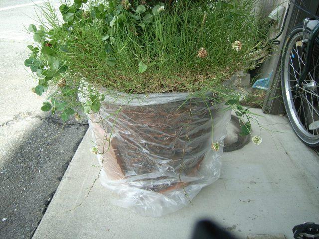 素焼き(テラコッタ)の植木鉢を修理する