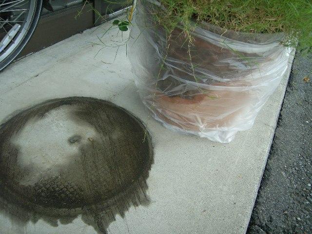割れた素焼きの植木鉢