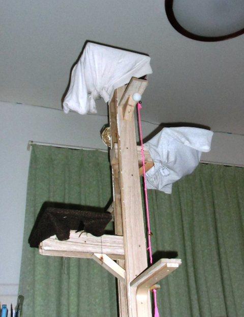 桐材で作ったDIYキャットタワー