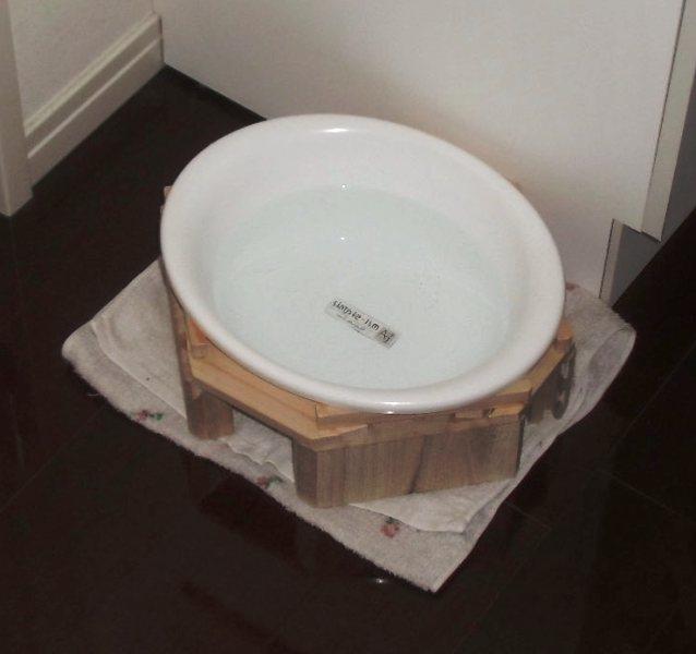 猫が水をこぼす対策済みの猫の水飲み洗面器