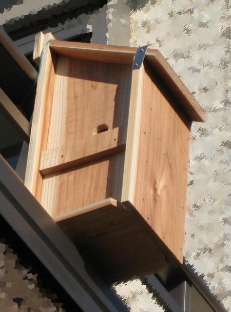 シジュウカラ用の巣箱を作ってみる