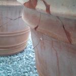 テラコッタの大きな植木鉢が割れました