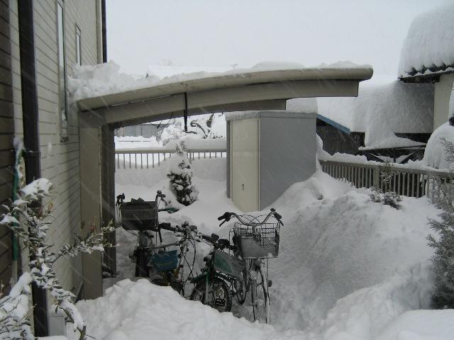 自転車置き場のカーポートを夜半過ぎから徹夜で雪下ろし
