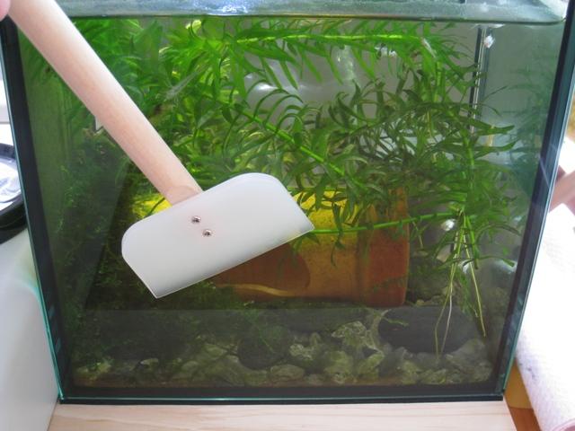 自作水槽スクレーパー